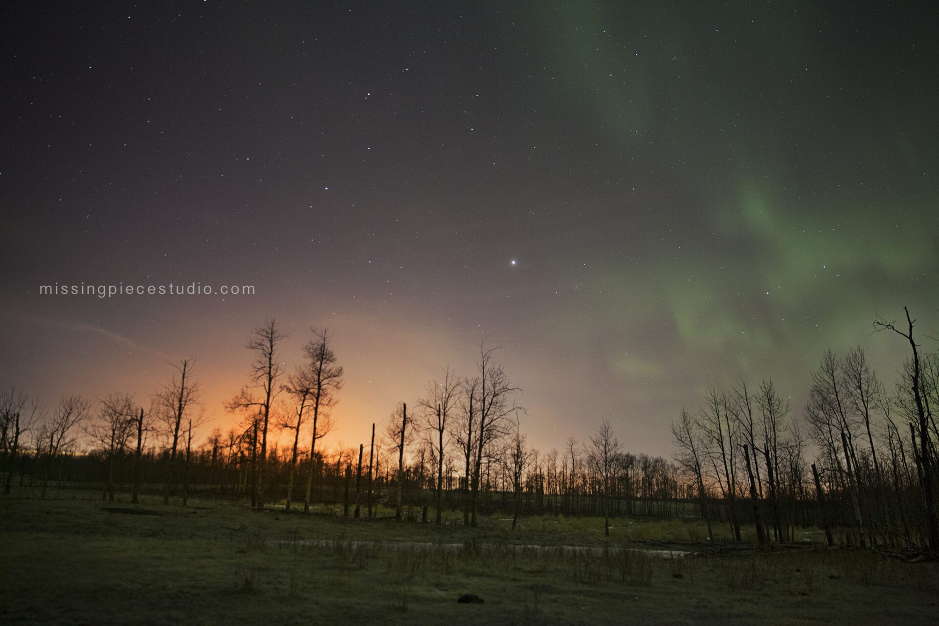 Northern lights (aurora borealis) taken on a cold winter night at Elk Island National Park